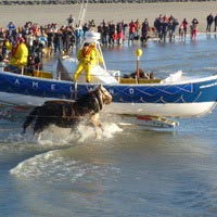 Demonstratie paardenreddingboot Ameland